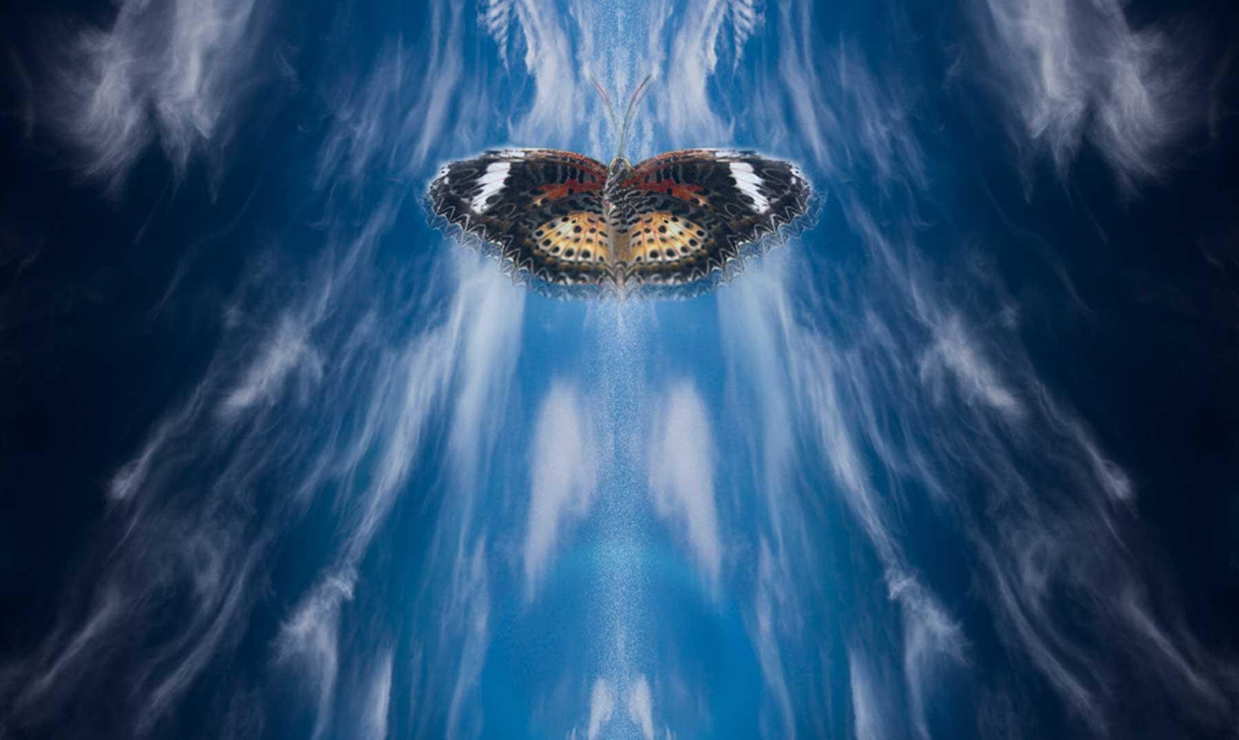 Partida Forja de Estrellas - Página 3 %C2%BFSabes-qu%C3%A9-es-el-efecto-mariposa-