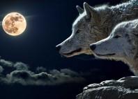 ¿Es verdad que la luna nos afecta?