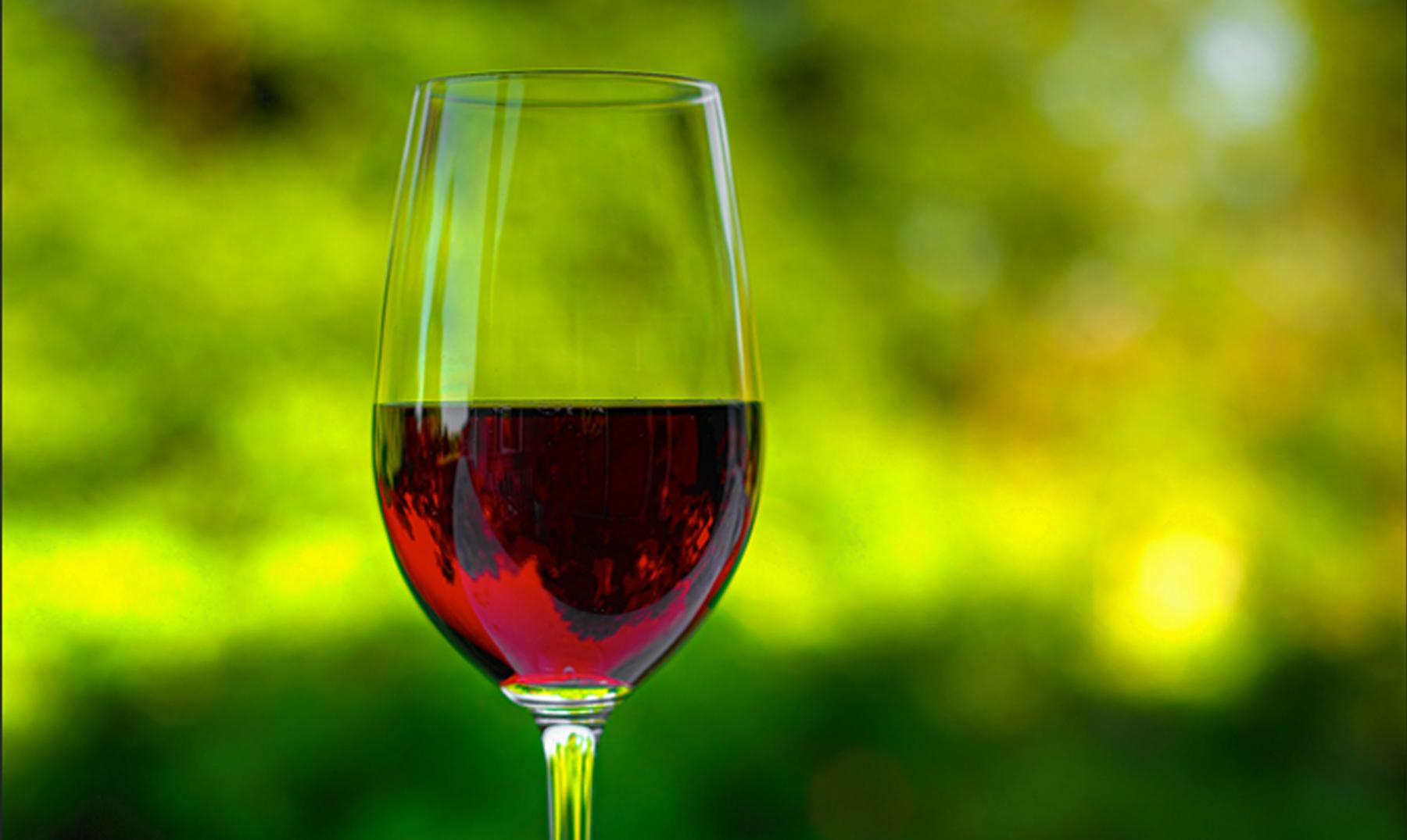 El Alcohol mata a las Neuronas? Sacate la Duda, aca la Posta