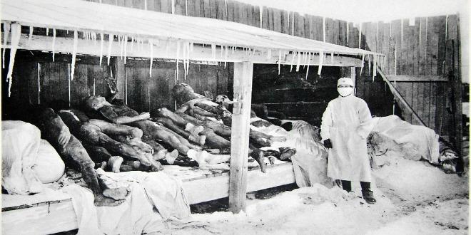 6 Datos interesantes sobre la peste.