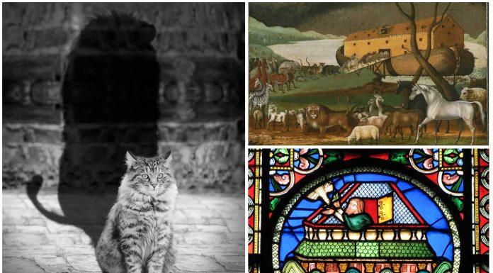 Resultado de imagen de La leyenda del origen de los gatos y el Arca de Noé