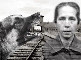 """""""La mujer de los perros"""", la sádica vigilante de Campo de Concentración nazi"""