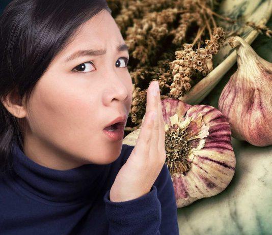 ¿Tienes aliento de ajo? Los científicos saben qué debes comer para erradicarlo