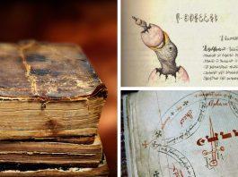 6 de los libros más extraños del mundo