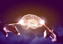 12 Misterios del Cerebro Humano