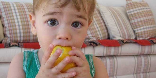 bebé comiendo limón