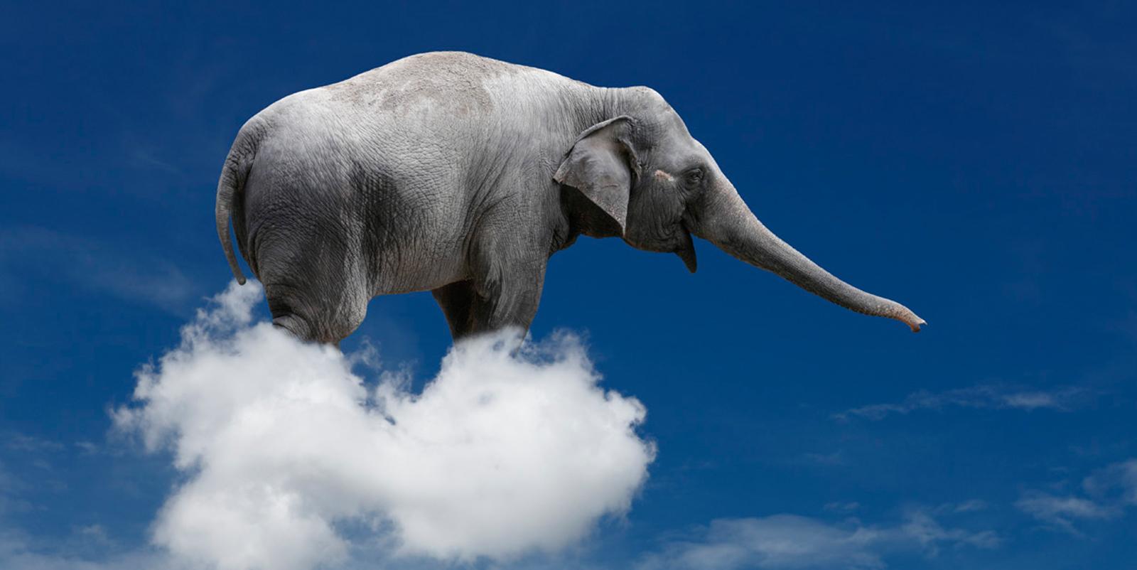 ¿Cuánto pesan las nubes? Lo mismo que un elefante