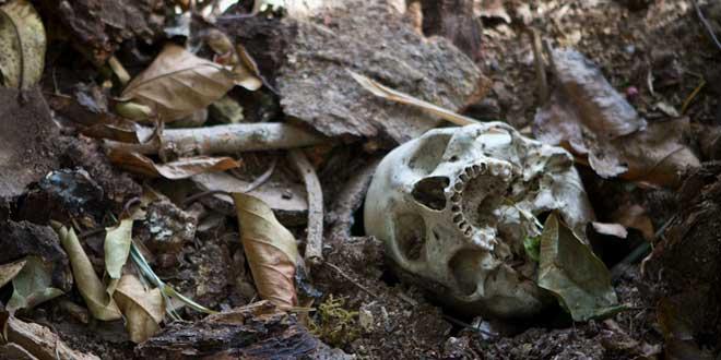 huesos humanos granja