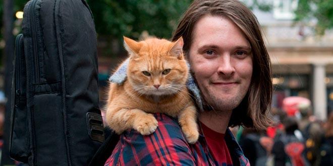 James Bowen y su gato