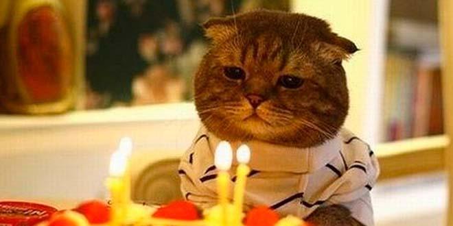 Origen soplar las velas