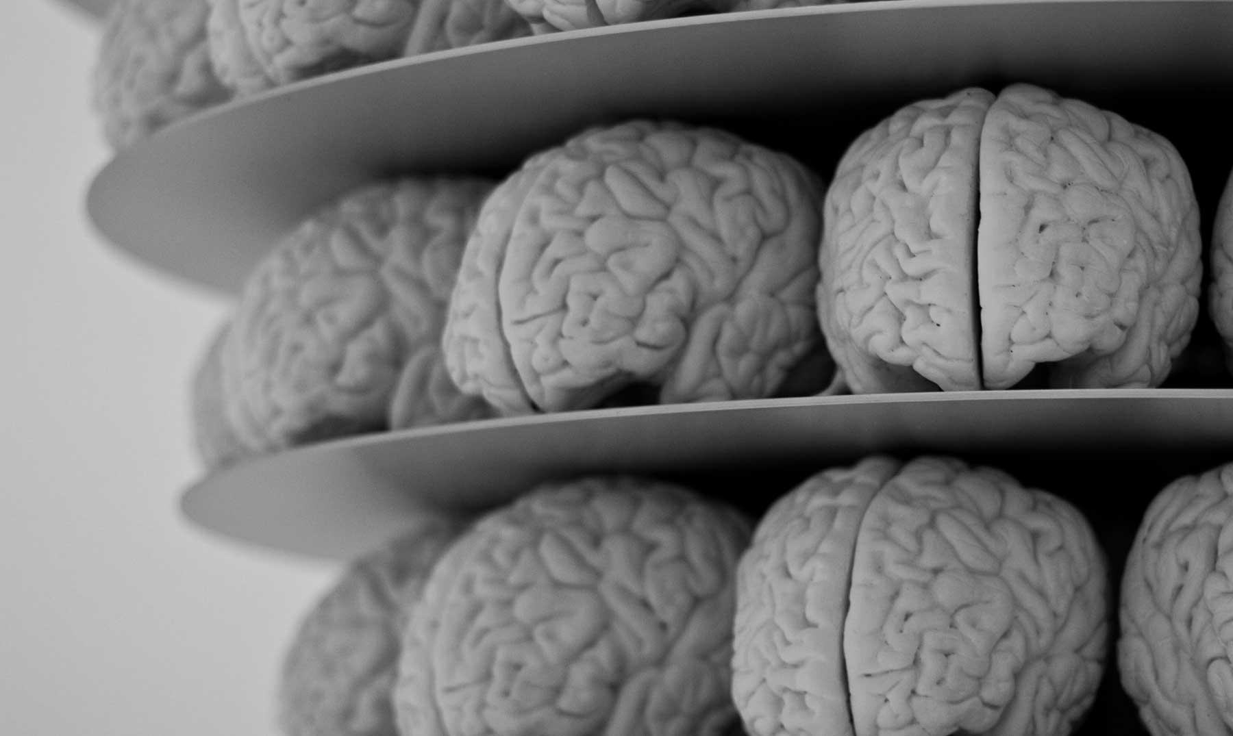 Tu cerebro te engaña