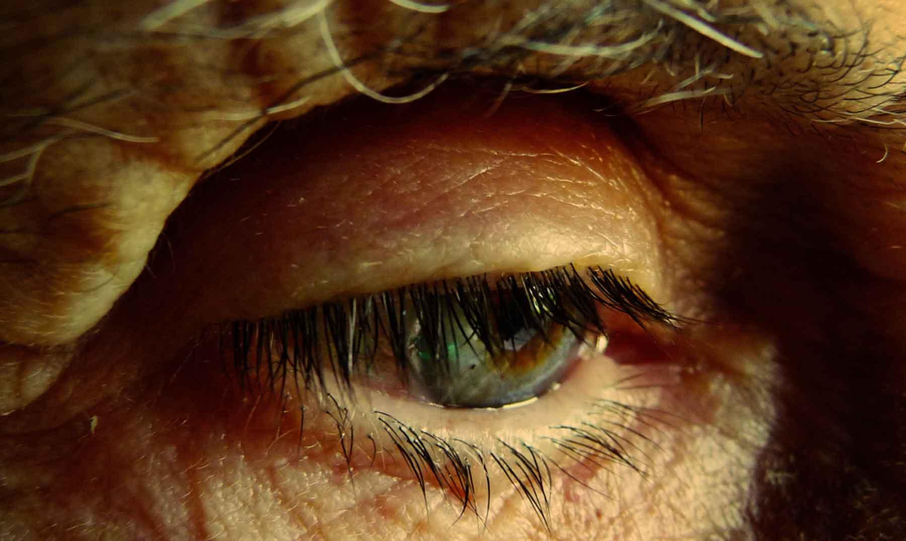 ¿Se podrían recuperar recuerdos perdidos en enfermos de Alzheimer