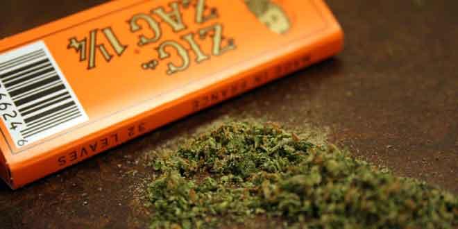 fumar-cannabis-espermatozoides