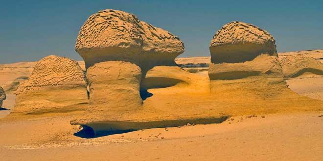 Wadi Al Hitan  el valle de las ballenas de Egipto