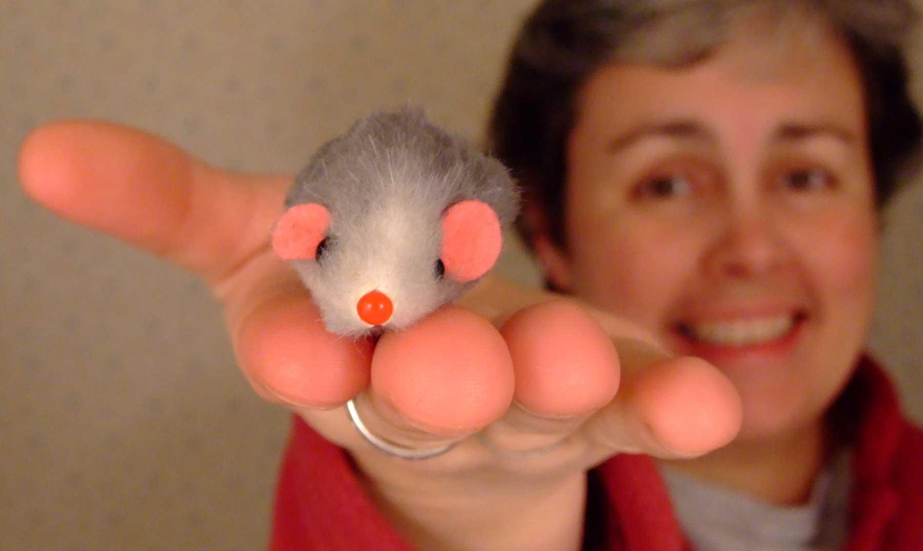 Palabra e inteligencia: los ratones tienen algo que decirnos