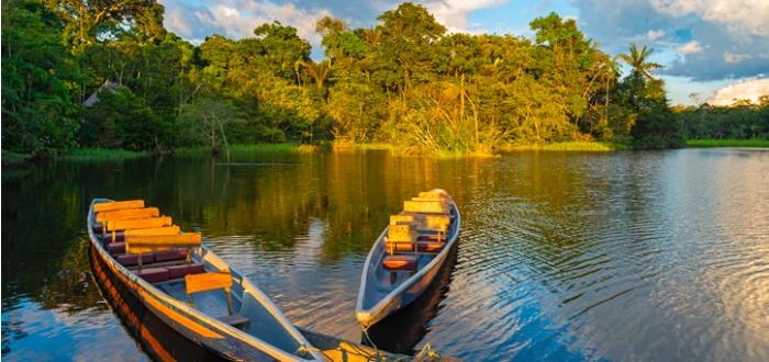 Erik Malpica Flores : El pez Candirú | Conocido como el pez vampiro del Amazonas