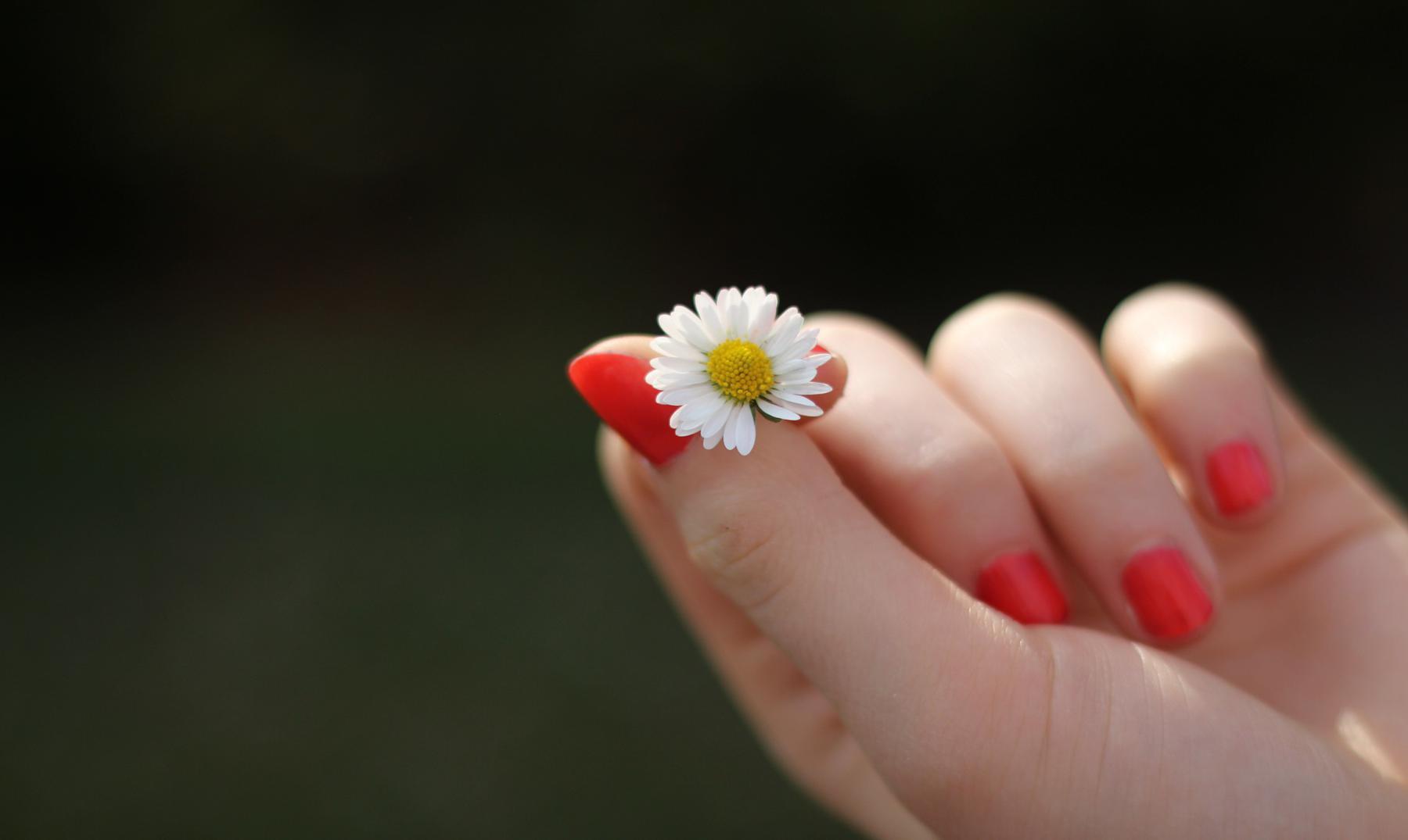 """Ideas falsas del """"amor romántico"""" que debes conocer"""