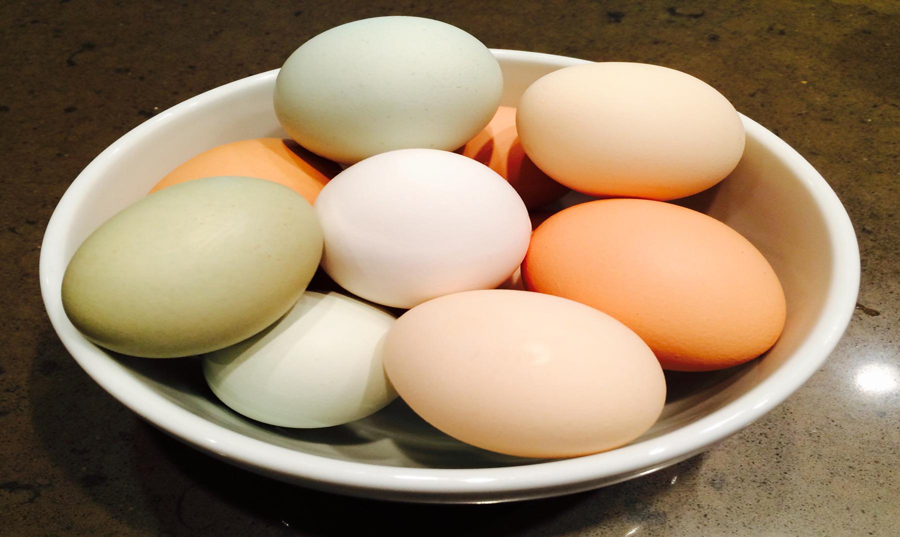 Huevos blancos, huevos marrones... pero, ¿cuál es la diferencia?