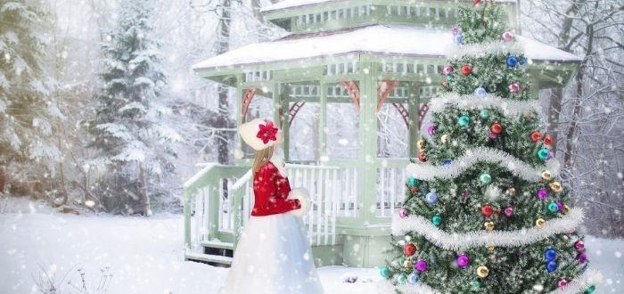 la verdadera historia del árbol de navidad