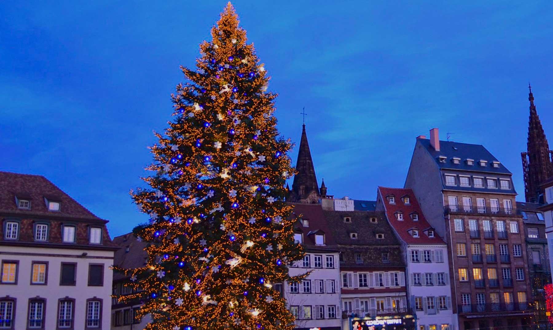 El origen del árbol de navidad, ¿dónde y cuando nace esta costumbre?