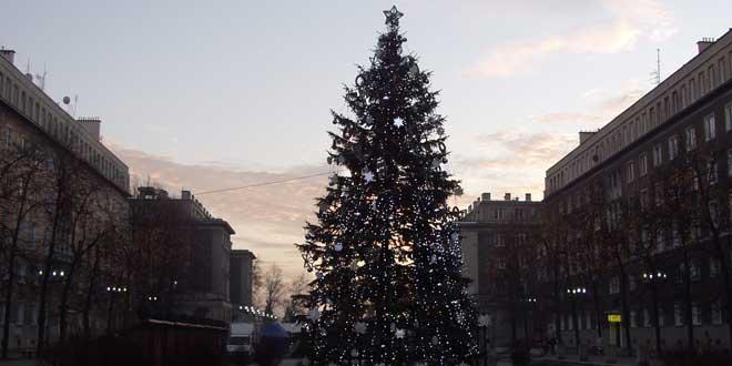 Árbol de Navidad Público
