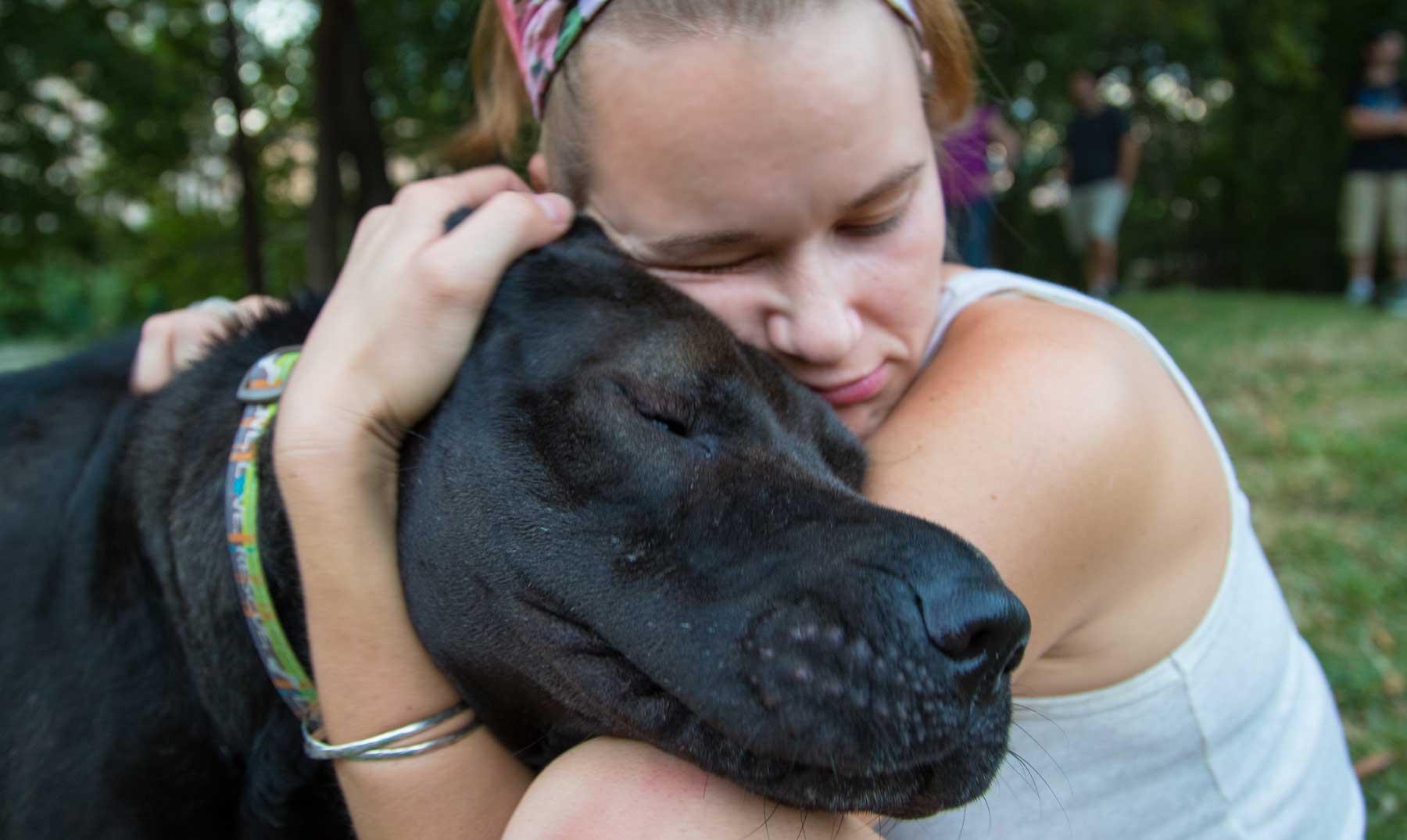 Cuándo el perro se convirtió en el mejor amigo del hombre