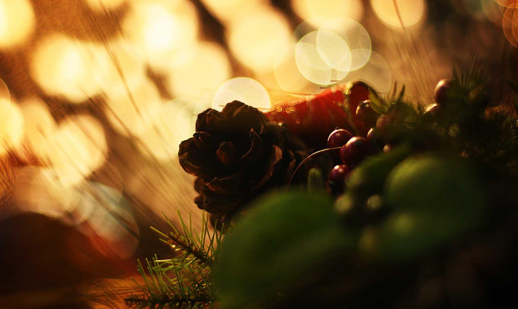 El mundo en Navidad: celebraciones judías y celebraciones musulumanas