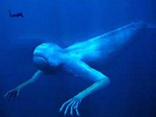 ningen-criaturas-humanoides-artico