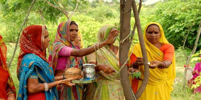 Piplantri-village-india4-650x385_660x330