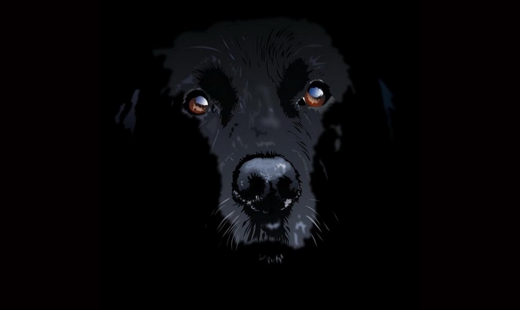"""La leyenda del Dip, el """"perro vampiro"""""""