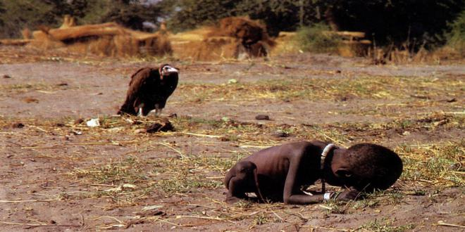 kevin-carter-vulture_660x330