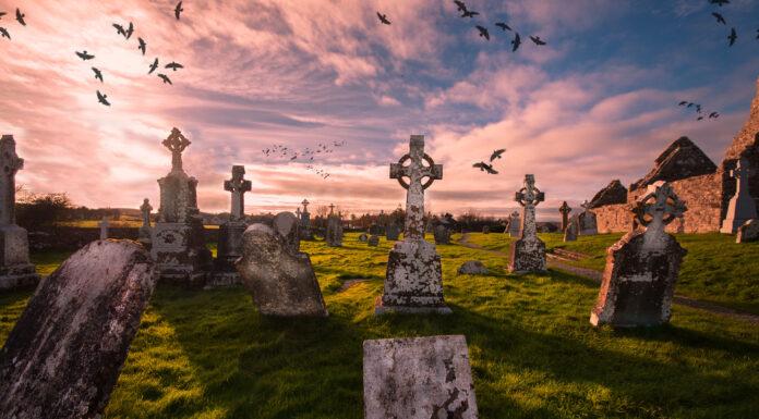 15 Epitafios Curiosos | Divertidos Mensajes de Despedida