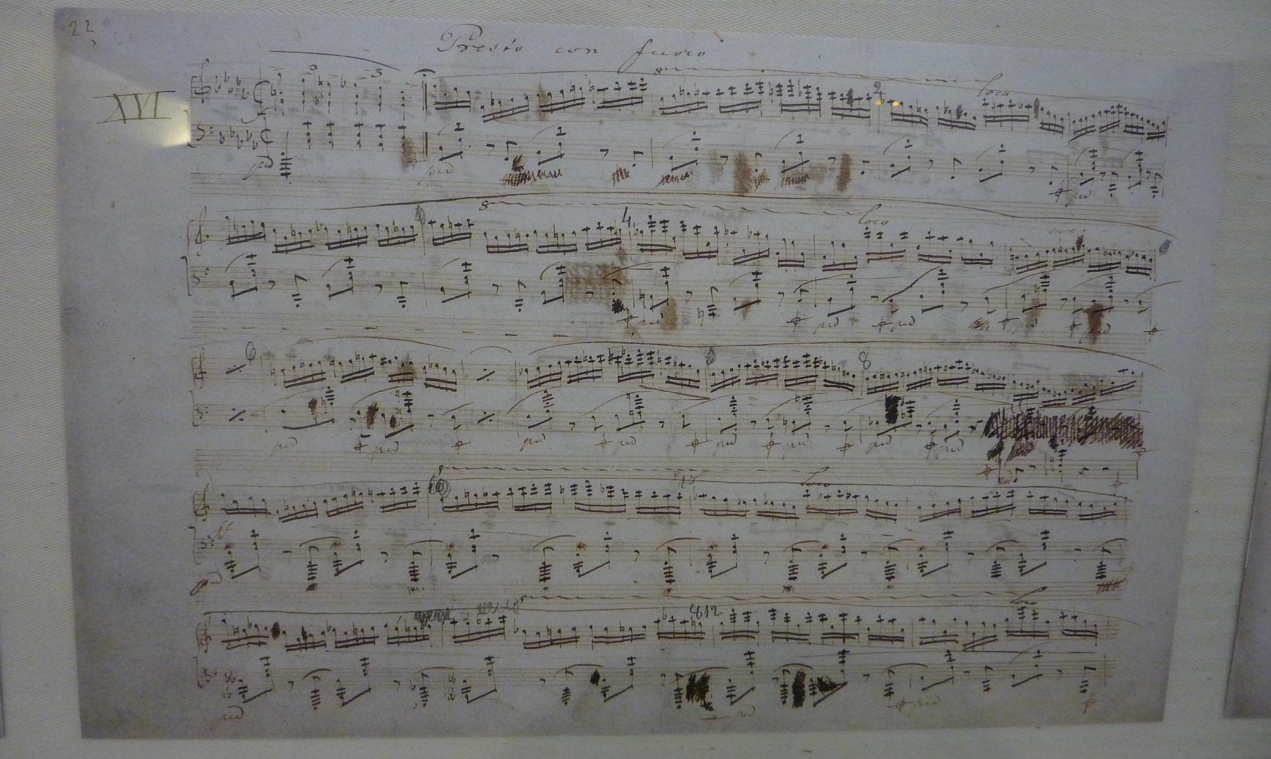 Curiosidades en la vida de Federico Chopin