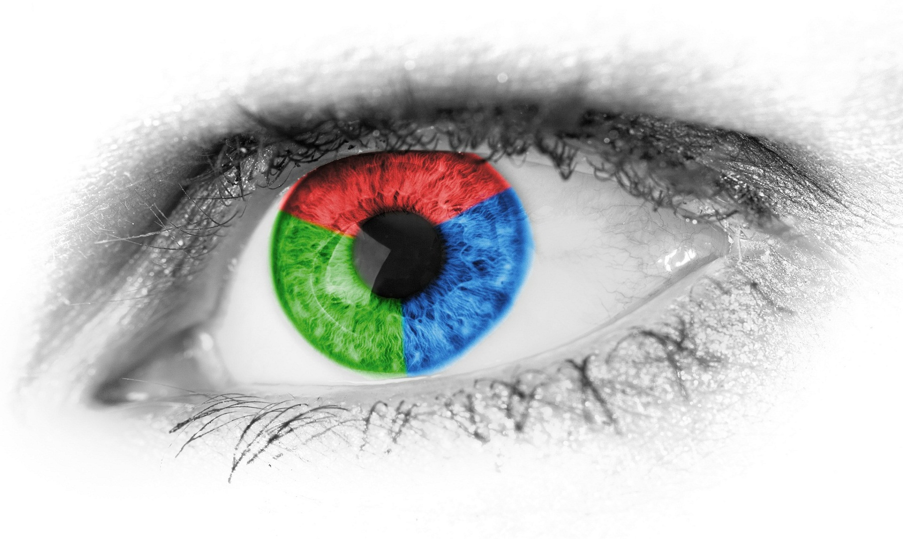 ¿Sabes cómo ves los colores?