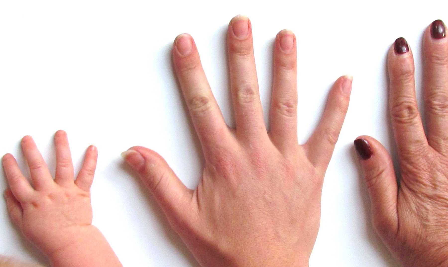 Nuestras maravillosas manos