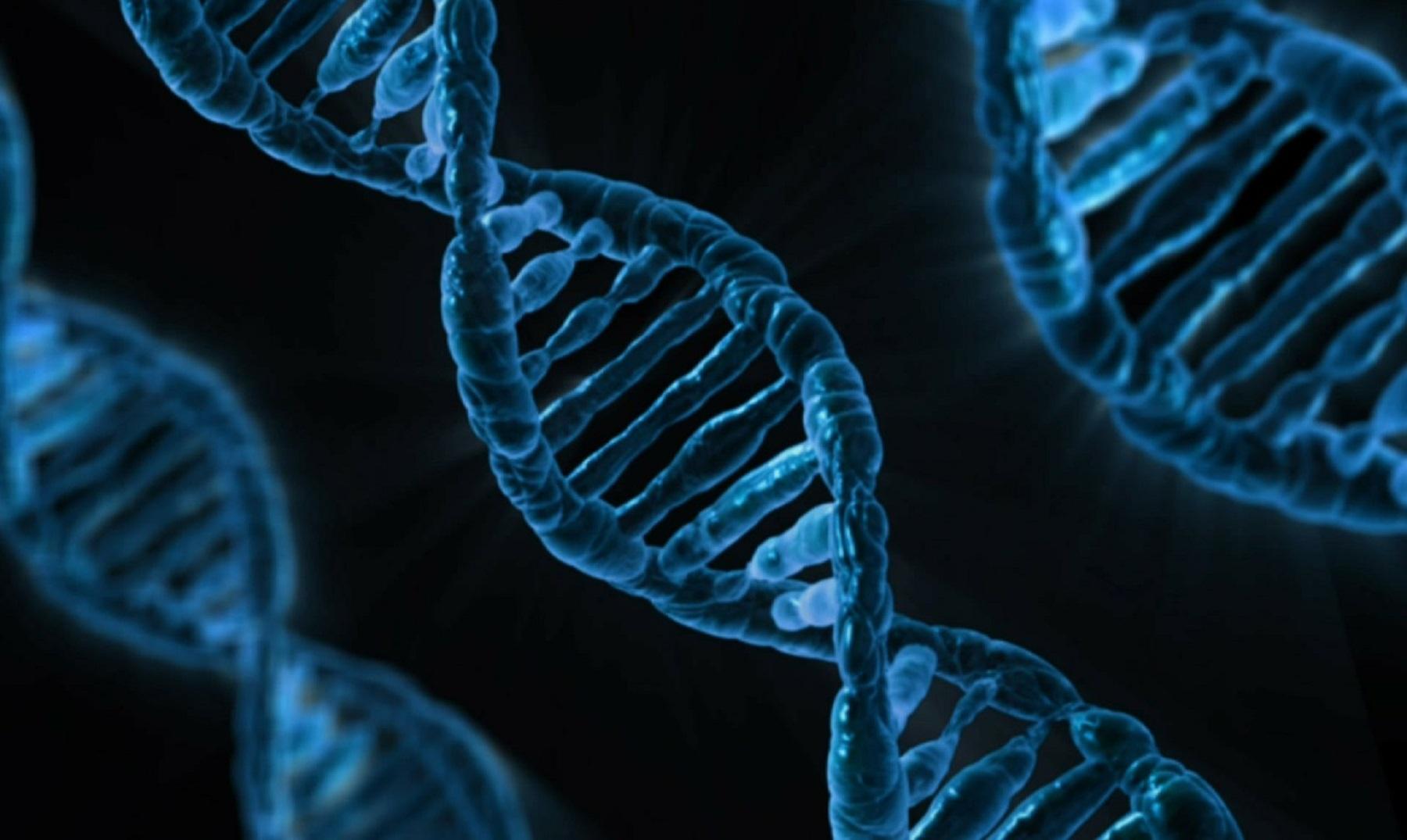 ¿Podría el ser humano vivir 500 años? Google lo afirma