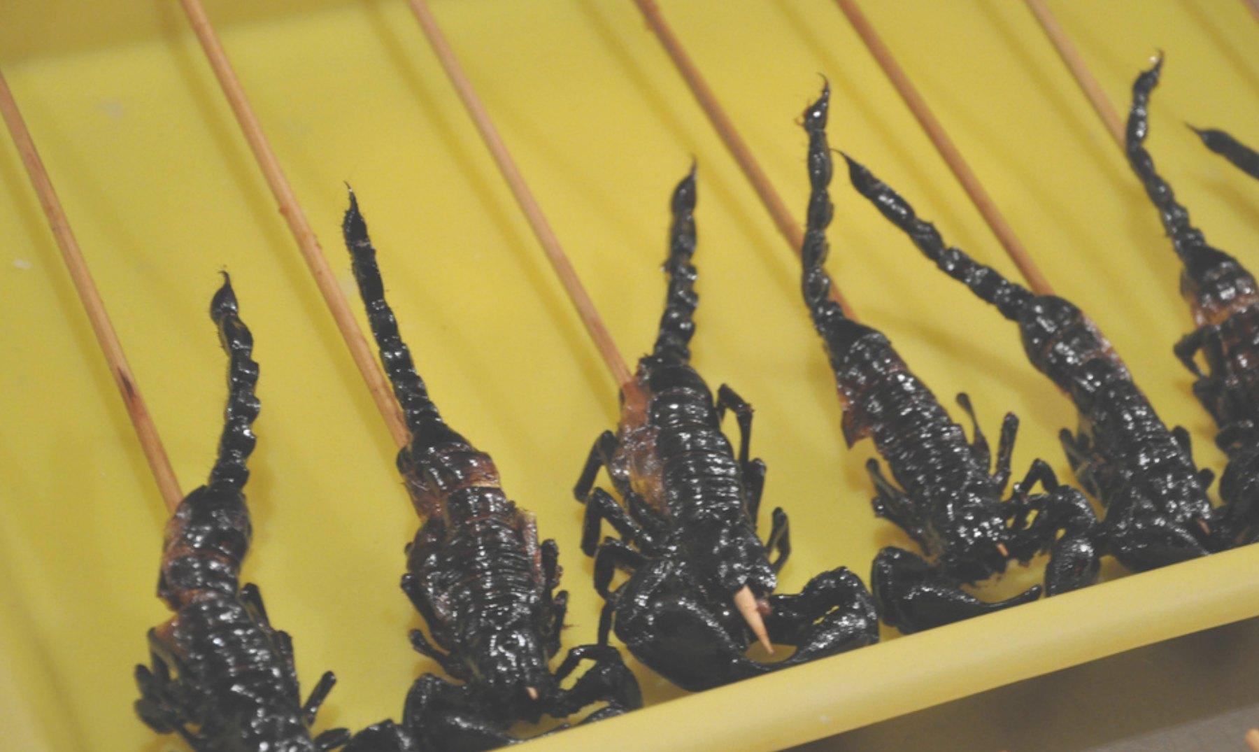 ¡6 alimentos y 6 museos de comida MUY curiosos!