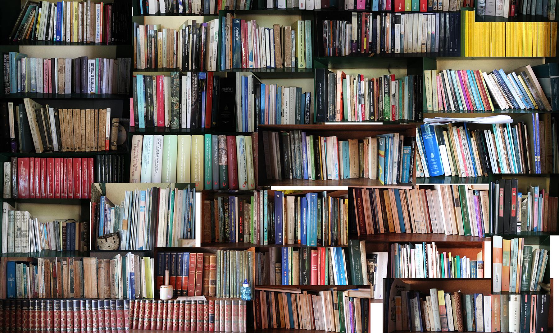 Los libros más…: récords de la literatura