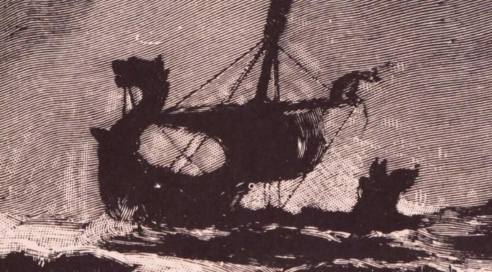 Museo de Barcos vikingos