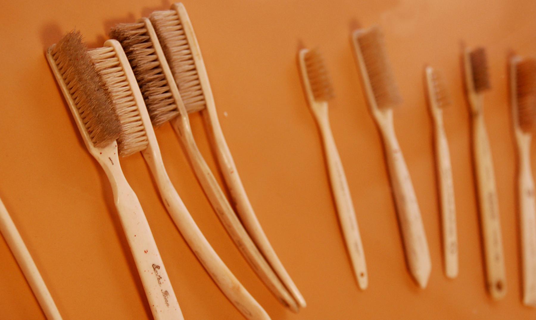 cepillos de dientes portada