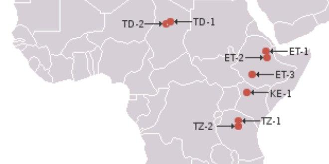 Laetoli, TZ2