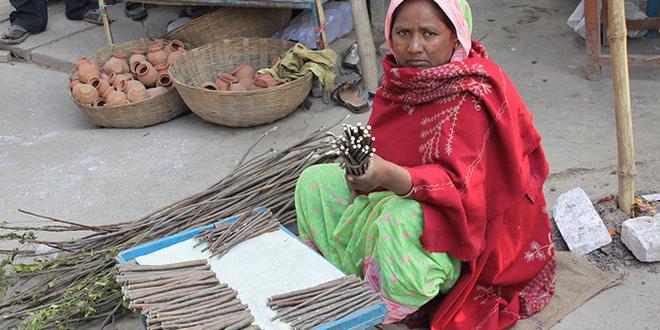 """Mujer en Varanasi, India, vendiendo el tradicional """"neem"""" que, entre otras cosas, sirve para limpiarse los dientes"""