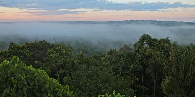La selva amazónica, el pulmón del planeta, sobre el río Amazonas