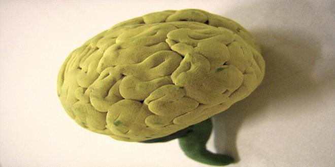 cómo aprende nuestro cerebro
