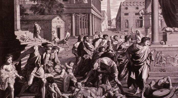 Peste Negra o Peste Bubónica | La Verdad sobre la Epidemia