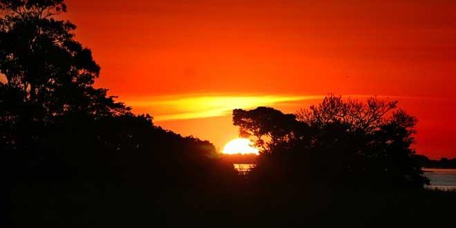 amazonas, hogar de los yanomami