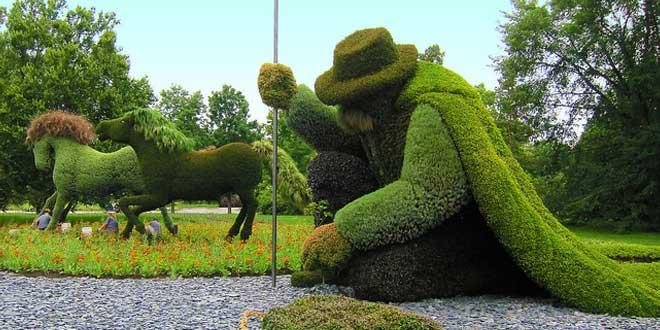 hombre planta árboles