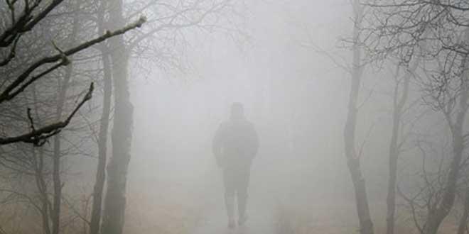 más niebla