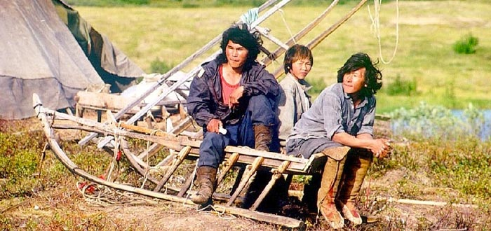 tribus del mundo, nénet