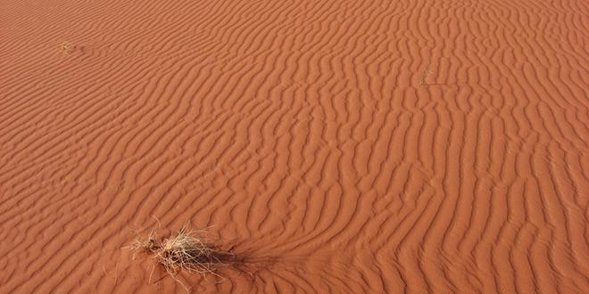 La huella de los vientos sobre la arena